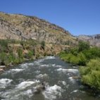 The Ranch is only a 20 minute drive to the famous Kern River where you can fish for Golden Trout, Rainbow Trout or take a whitewater rafting trip